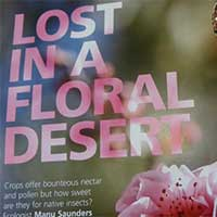 Lost in floral desert