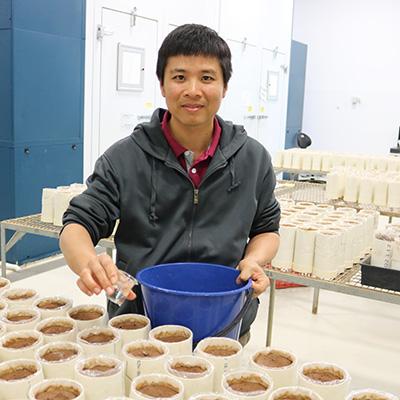 Hoang Han Nguyen