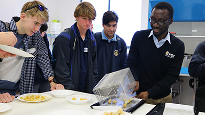 Post doctoral researcher Randy Adjonu demonstrating frying