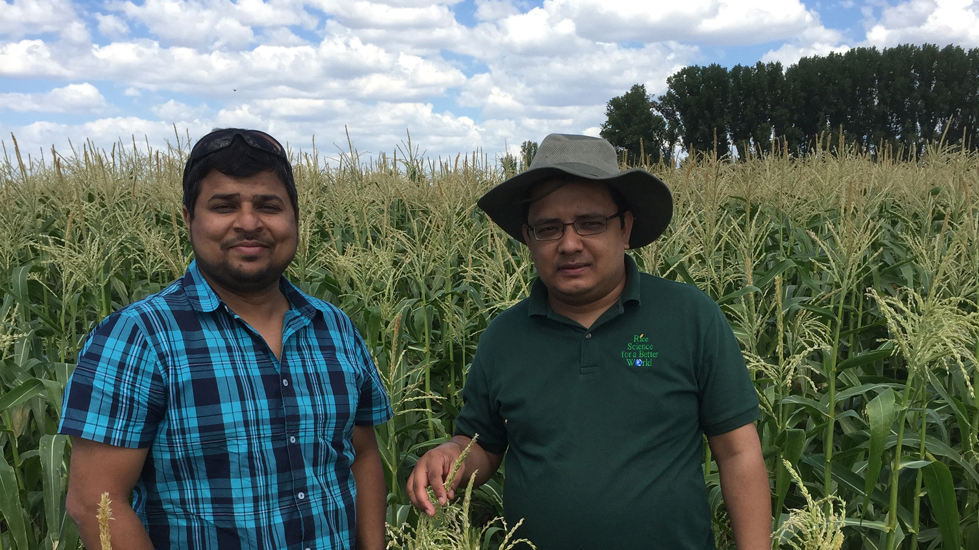 Dr Syed Rizvi and Dr Ahsanul Haque carrying out field samples as part of the research