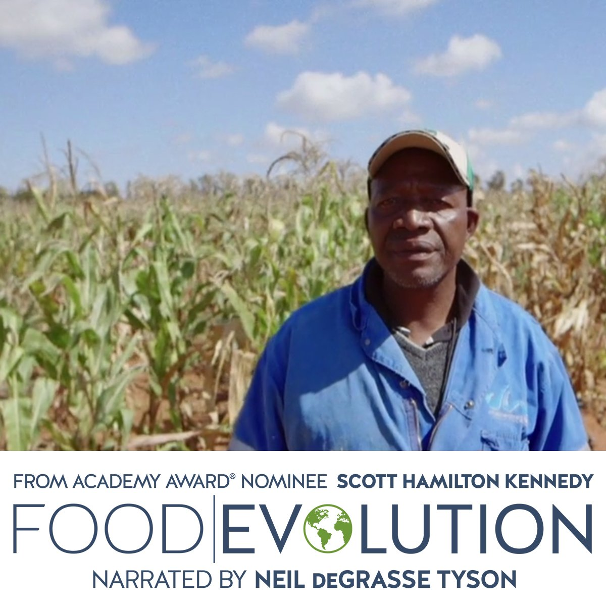 A scene from the film Food Evolution directed by Scott Hamilton Kennedy. Photo courtesy of Black Valley Films