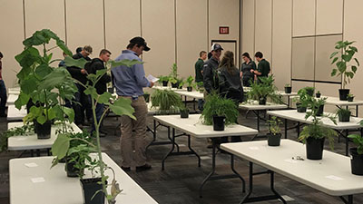 Danyon Williams completes the plant exam as part of the NACTA competition at Northeast Community College in Norfolk, Nebraska.