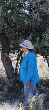 Aunty Beryl Philp Carmichael, Ngiyeempaa Elder