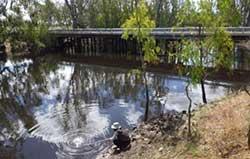 Thule Creek