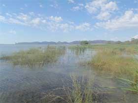 Lake Brewster
