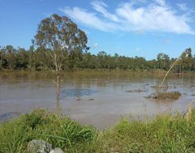 Brisbane River in Flood