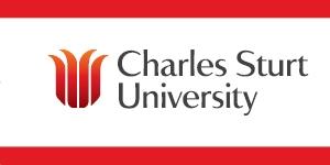 CSU Brand Flag