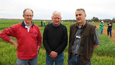Jon Shuter, TAFE NSW Primary Industries Centre, Peter Campbell 'Avondale' Henty and Nigel Phillips NSW DPI.