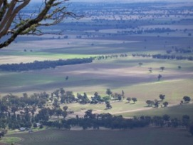 View of paddocks in a wide landscape
