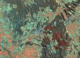 Landsat Image Beechworth
