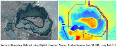 Avalon Swamp