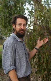 Associate Professor David Watson and Box Mistletoe